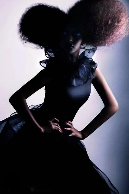 Haute Couture Hair by Wade Lee