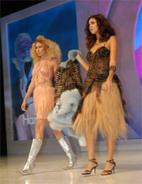Premier Orlando Show Showcased The Doves and Hairdreams