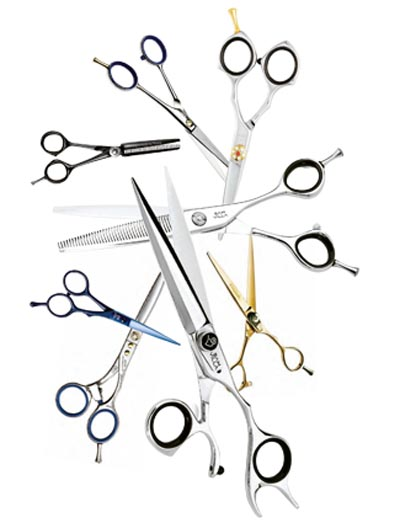 BLADES OF GLORY. Cutting-Edge Advice for the Scissor-happy!