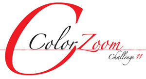 Star Power: Goldwell Color Zoom US Finalists