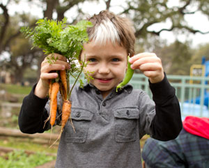 Green schools make children healthier and happier.
