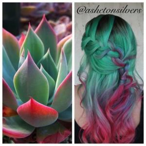 Rich_mint_green_to_cool_red_colormelt_inspired_by_this_echeveria_plant_by_Asheton_Silvers_IG_@ashetonsilvers_