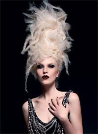 NAHA Master Stylist 2009, winning images