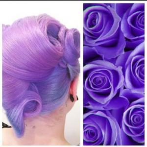 Purple_hair_and_vintage_French_roll_style_inspired_by_purple_roses_by_Kelly_Woodford_IG_@hairbymisskellyo_